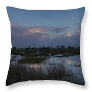 Sunrise Over The Wetlands Throw Pillow