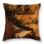 Sunrise Point 9 Throw Pillow