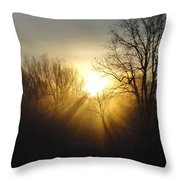 Sunrise Rays Throw Pillow