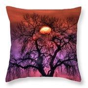 Sunrise Through The Foggy Tree Throw Pillow