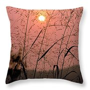 Sunrise Through The Tall Grass Throw Pillow