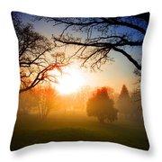 Sunrise Through Trees Throw Pillow