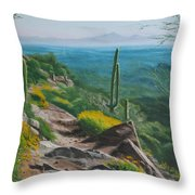 Sunrise Trail Throw Pillow