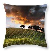 Sunrise Vineyard Throw Pillow