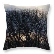 Sunrise With Bird Throw Pillow