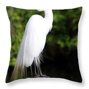 Sunrise With The Egret  Throw Pillow