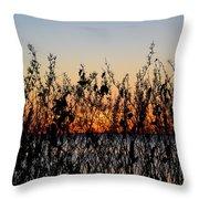 Sunrise2 Throw Pillow