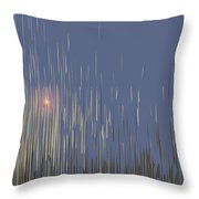 Sunset Across The Lake Throw Pillow by Gina Harrison