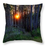 Sunset Along The Florida Trail - St.marks Throw Pillow
