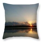 Sunset And Birds Throw Pillow