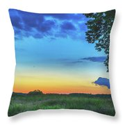 Sunset And Flowers Throw Pillow
