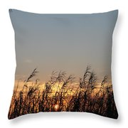 Sunset And Palm Grass Throw Pillow