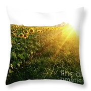 Sunset And Rows Of Sunflowers Throw Pillow