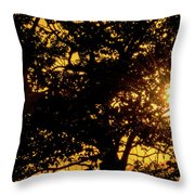 Sunset And Trees - San Salvador I Throw Pillow