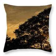 Sunset And Trees - San Salvador Throw Pillow