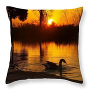 Sunset At Copper Canyon Ranch Throw Pillow