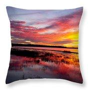 Sunset At Myakka River State Park, Florida Throw Pillow