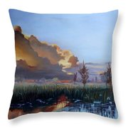 Sunset At Pine Glades Throw Pillow