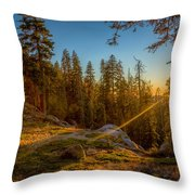 Sunset At Sequoia Throw Pillow