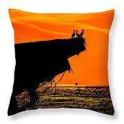 Sunset At The Ss Atlantus Concrete Ship Throw Pillow