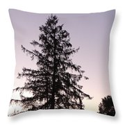 Sunset Behind The Pines Throw Pillow