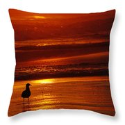 Sunset Bird 2 Throw Pillow