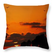 Sunset Birds Throw Pillow