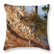 Sunset By The Water Throw Pillow