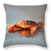 Sunset Crab Throw Pillow