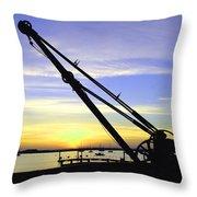 Sunset Crane Throw Pillow