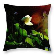 Sunset Drama Throw Pillow