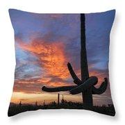 Sunset Embrace Throw Pillow