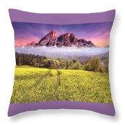 Sunset Fields Throw Pillow