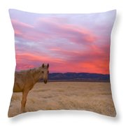 Sunset Filly Throw Pillow