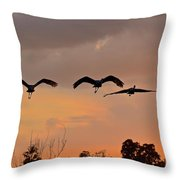 Sunset Fly Over Throw Pillow