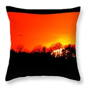 Sunset Flying Three  Throw Pillow
