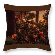 Sunset Garden Throw Pillow