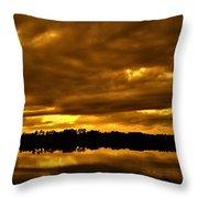 Sunset Gold Throw Pillow