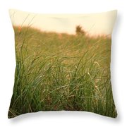 Sunset Grass At Plum Island Throw Pillow