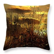 Sunset Grasses Throw Pillow