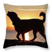 Sunset Howl Throw Pillow
