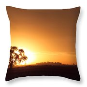 Sunset In Arizona Throw Pillow