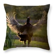 Sunset In His Wings Throw Pillow