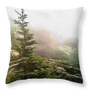 Sunset In The Pine Forest Throw Pillow
