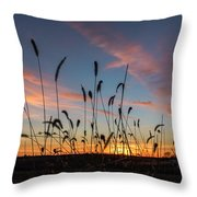 Sunset In The Weeds Throw Pillow