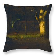 Sunset In The Woods Throw Pillow