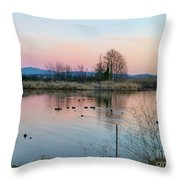 Sunset In Union Bay Throw Pillow