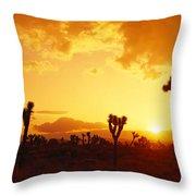 Sunset, Joshua Tree Park, California Throw Pillow