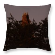 Sunset Light Throw Pillow
