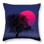 Sunset Magenta Throw Pillow